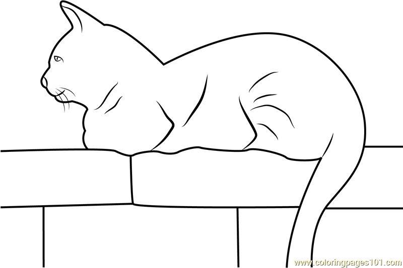 Cat Sitting On Wall Coloring Page Free Cat Coloring