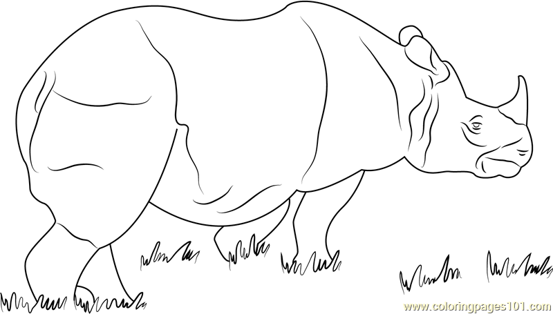 One Horned Rhino Coloring Page Free Rhinoceros Coloring