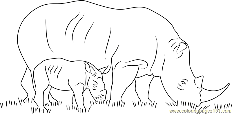 Cartoon Baby Animals Coloring Pages. Diagram. Wiring
