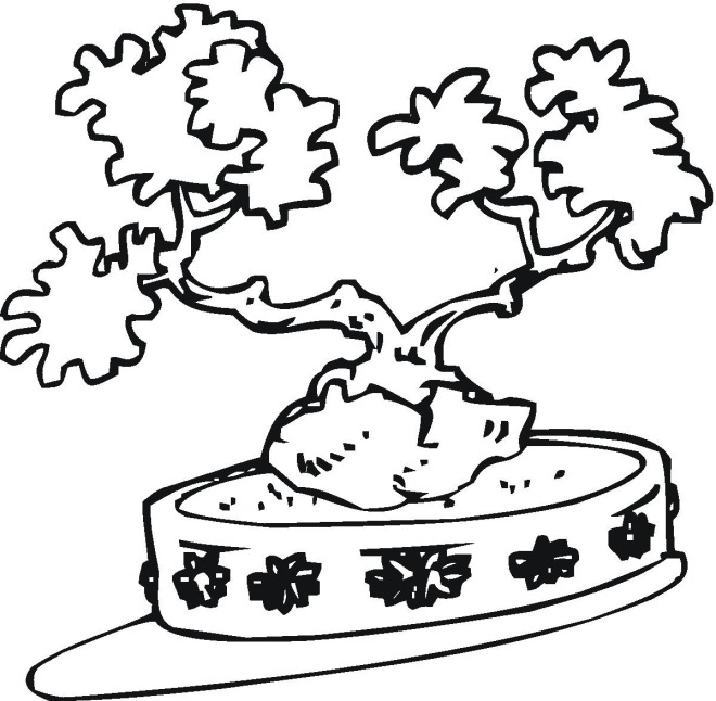 Tree bonsai coloring page