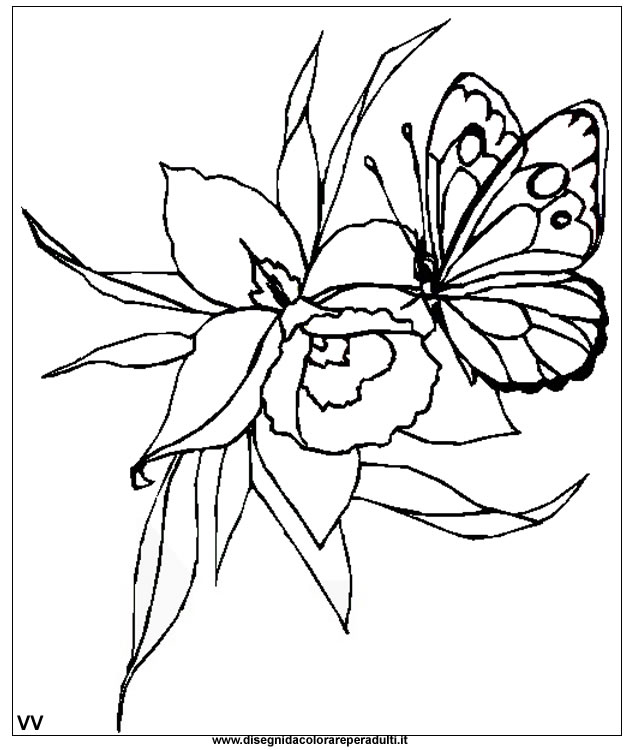 spring_01 Spring coloring pages for adults and teenagers
