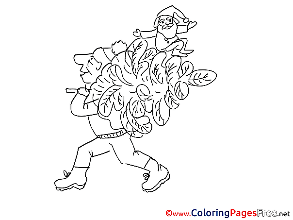 Tree free Colouring Page download