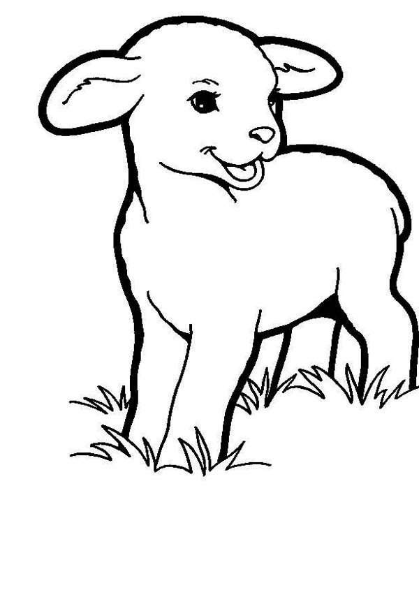 2014 Little People Coloring Pages For Babies