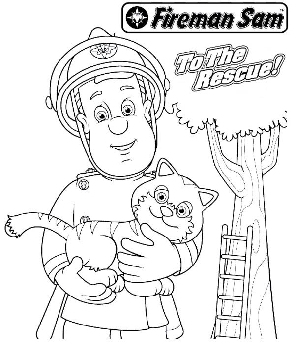 Fireman Sam Rescueing Beautiful Cat from Tall Tree