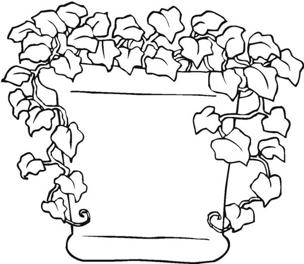Growing Plants Coloring Page Coloring Pages