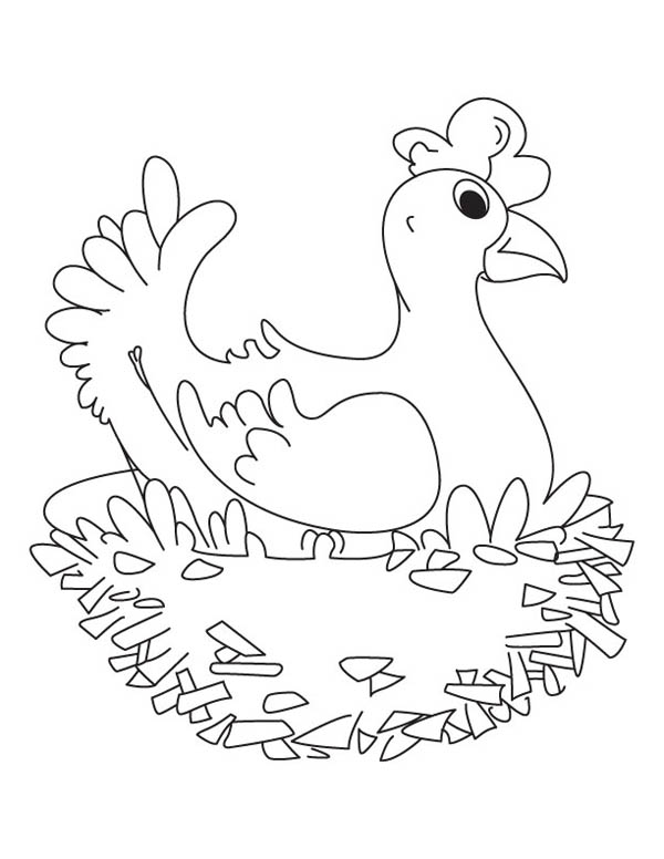 Hen Sitting On Her Nest Coloring Page : Coloring Sky