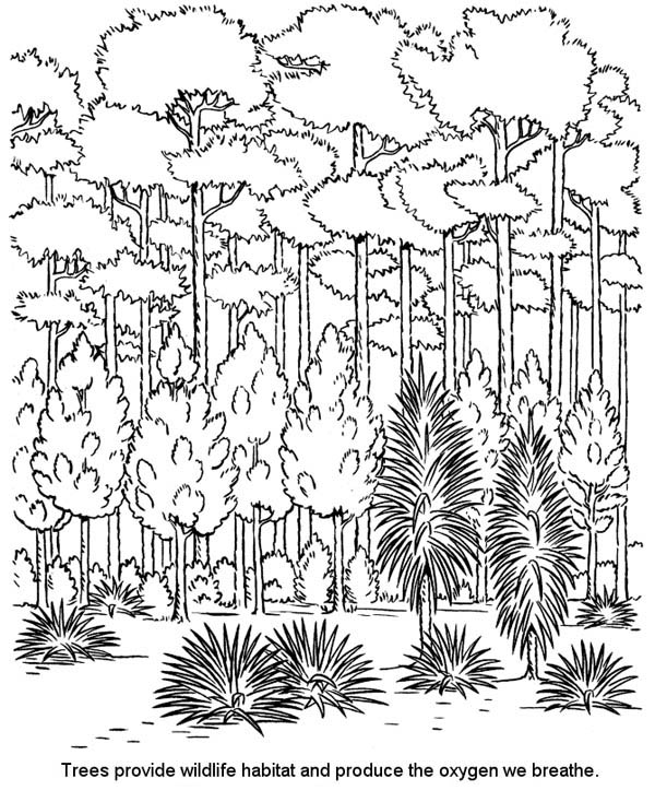 Industrial Revolution Coloring Pages Coloring Coloring Pages