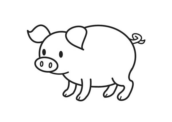 Cute Pig Coloring Page : Coloring Sky