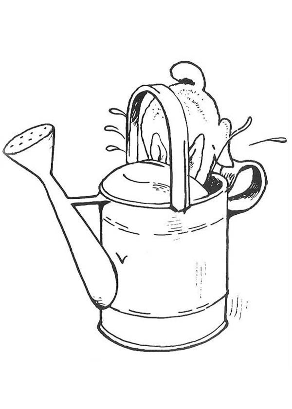 Peter Rabbit Drink From Water Can Coloring Page : Coloring Sky