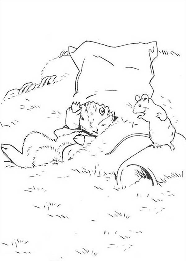 Peter Rabbit Talking To Mouse Coloring Page : Coloring Sky