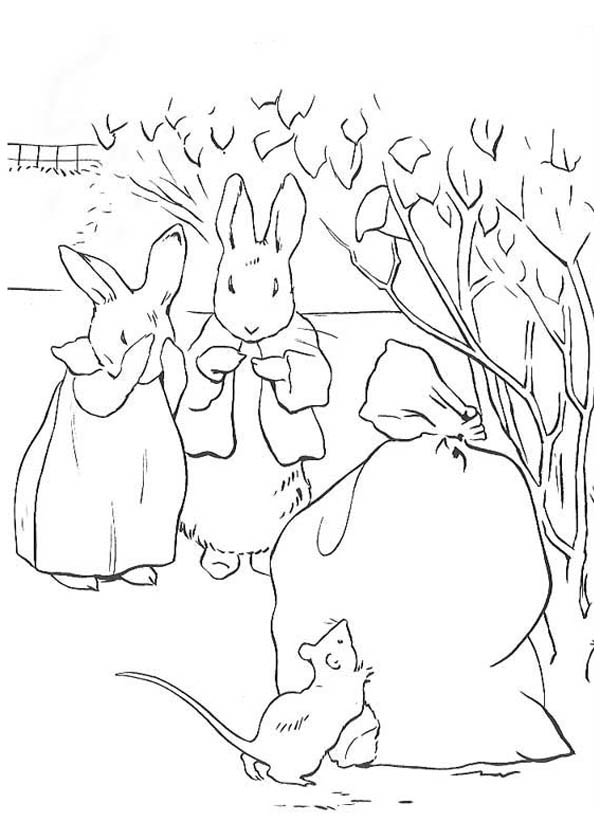 Peter Rabbit And His Mother Found Out Mouse Eating Their