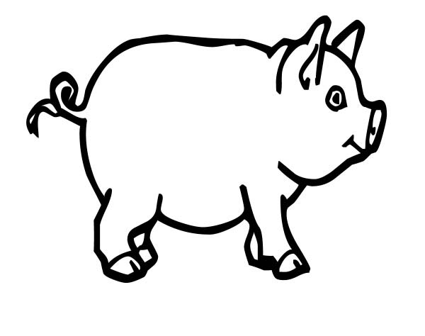 Pig For Bacon Coloring Page : Coloring Sky