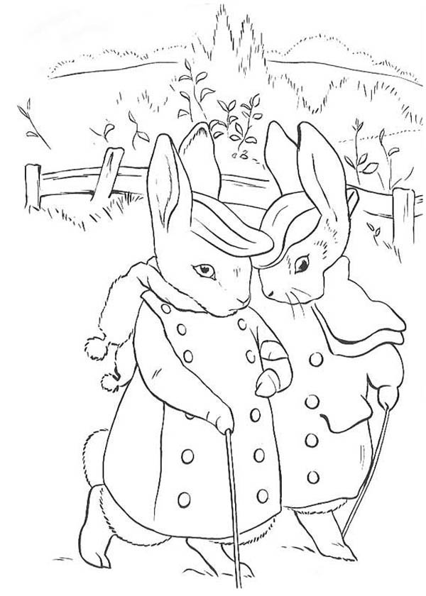 The Tale Of Peter Rabbit Coloring Page Coloring Sky