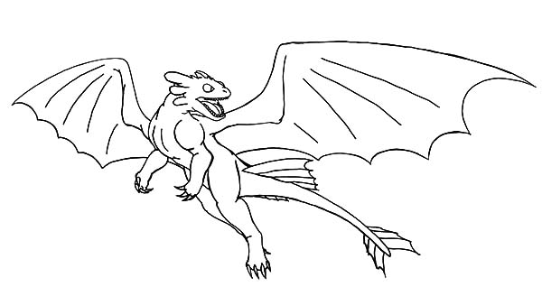 Night Fury Fight in How to Train Your Dragon Coloring
