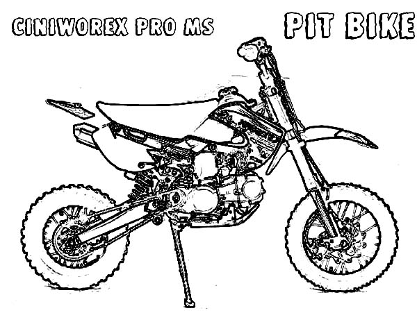 Dirt Bike CINIWOREX Pit Bike Coloring Page: Dirt Bike