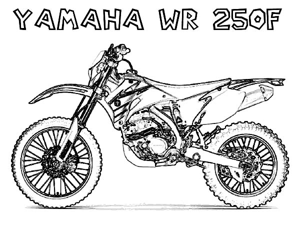 You searched for Dirt Bike Honda Crf50f Pit Bike Coloring