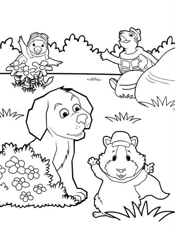 Wonder Pets All Characters Playing Hide And Seek Coloring