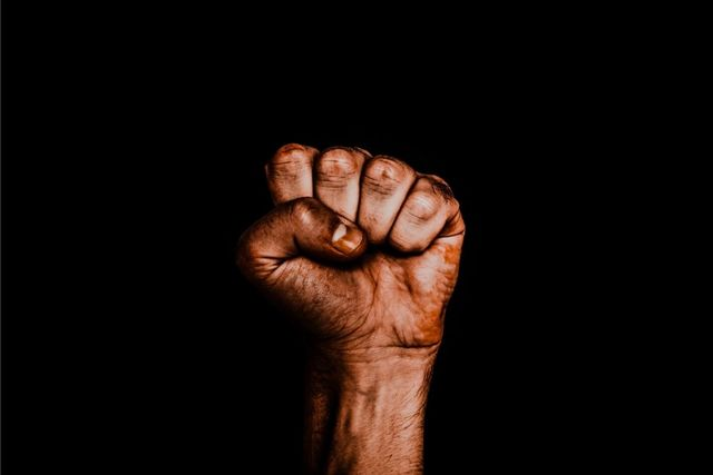 Clenched brown fist against a black backdrop, the universal Black Power symbol