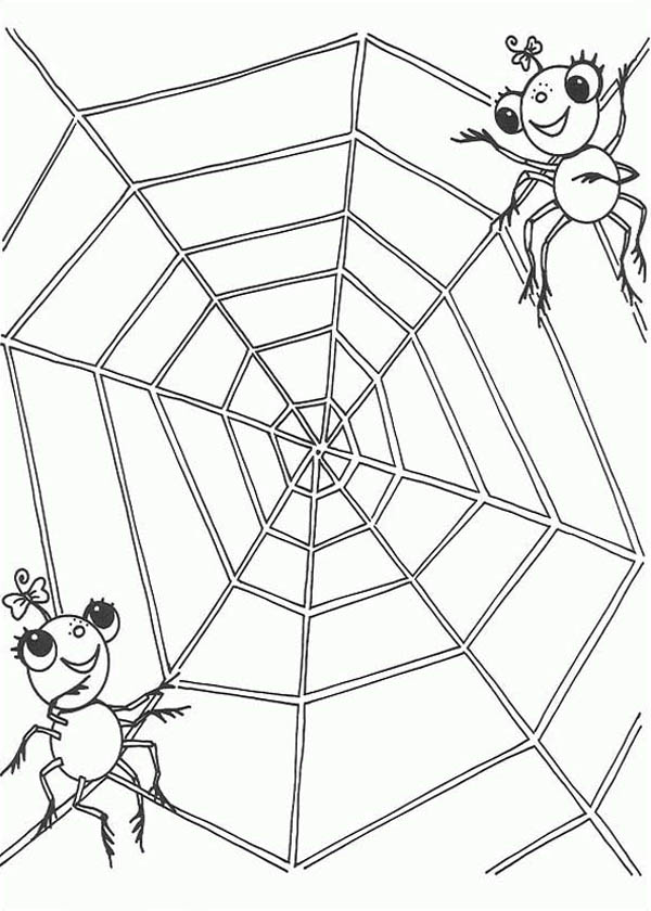 A Spider Couple On The Edge Of Spider Web Coloring Page