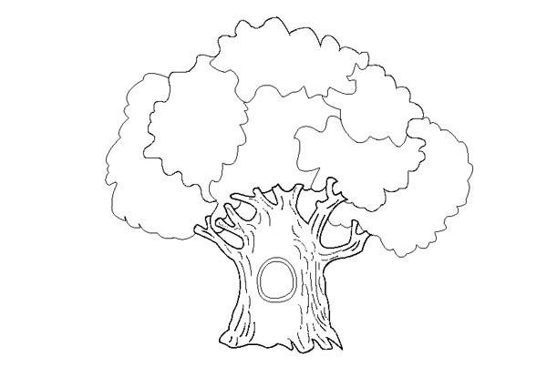 An Old Oak Tree Coloring Page : Color Luna