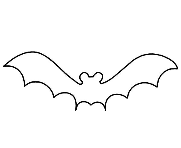 Bats Outline Coloring Page Color Luna