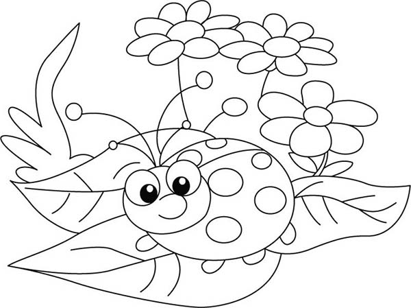Lady Bug And Three Beautiful Flower Coloring Page : Color Luna