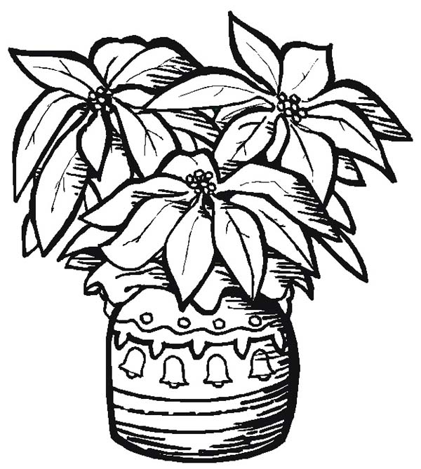 Pottery poinsettia coloring page color luna, jesus loves me coloring pages printables