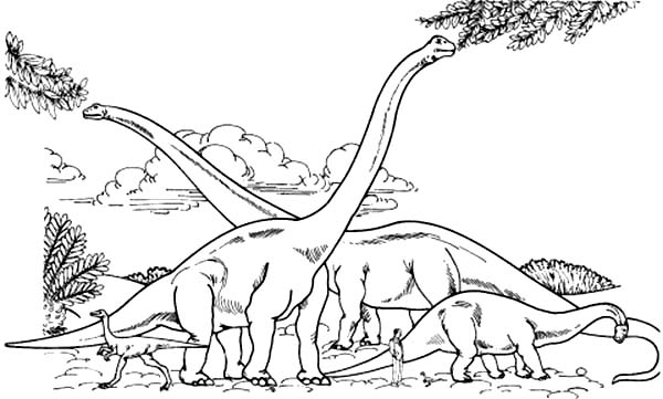 Brachiosaurus Colony Eating From Tree Branch Coloring Page