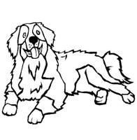 Bernese Mountain Dog Coloring Page   Color Luna