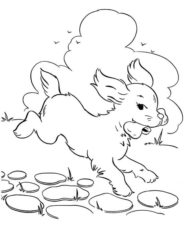 Droopy Dog Coloring Pages Droopy Dog Coloring Pages