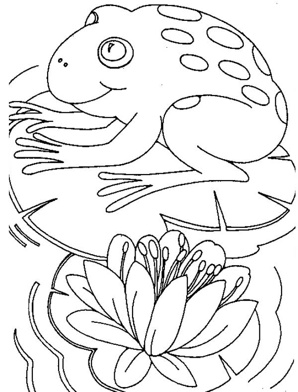 Big Frog Sitting Comfortably on Lily Pad Coloring Page