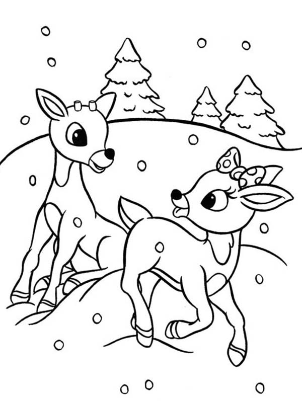 """Search Results for """"Colouring Page Santas Reindeer"""