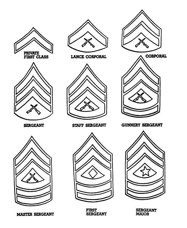 celebrating veterans day  enlisted men badges coloring