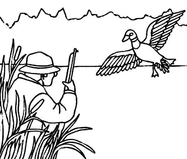 Mallard Duck Outline Coloring Pages: Mallard Duck Outline