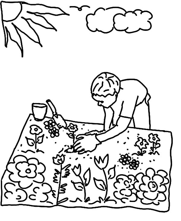 How Seeds Grow Coloring Pages Coloring Pages