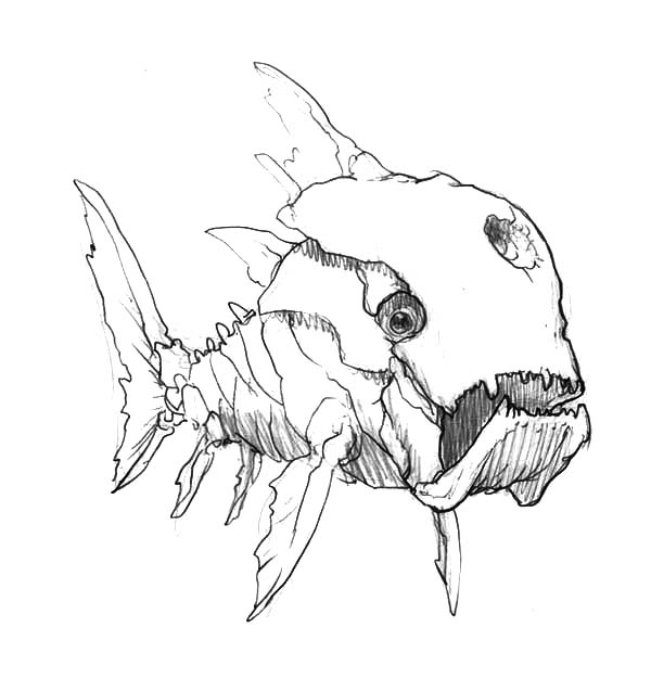 Dunkleosteus Coloring Pages Coloring Pages