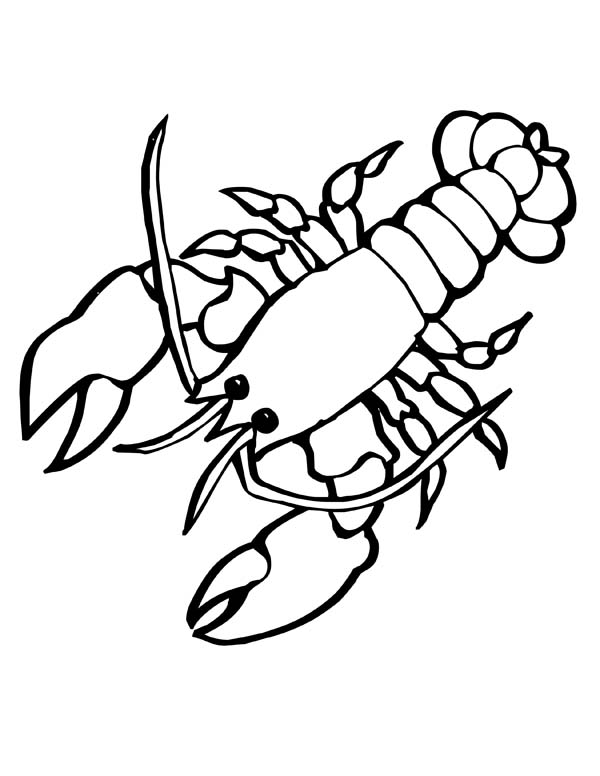 Giant Sea Lobster with big Clasp Sea Animals Coloring Page