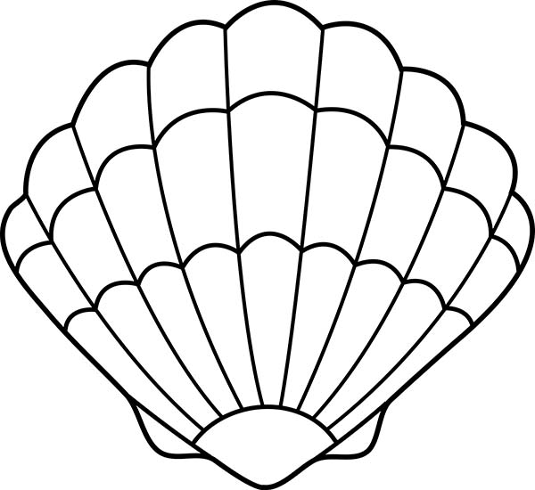 A Lovely Zigzag Scallop Seashell Drawing Coloring Page: A