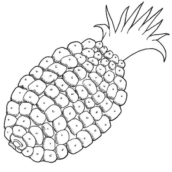 Corn Liked Pattern Pineapple Coloring Page Download