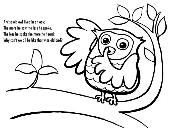 owl poet and coloring for kids: owl-poet-and-coloring-for