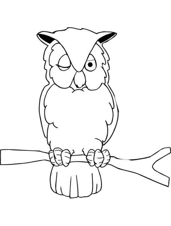 sleepy owl coloring page: sleepy-owl-coloring-page.jpg