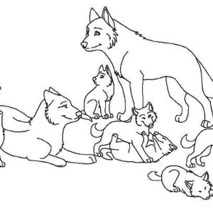Baby Wolf Cub Coloring Pages Coloring Pages