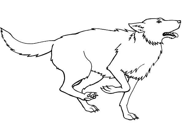 Wolf, : Running for Prey Wolf Coloring Page