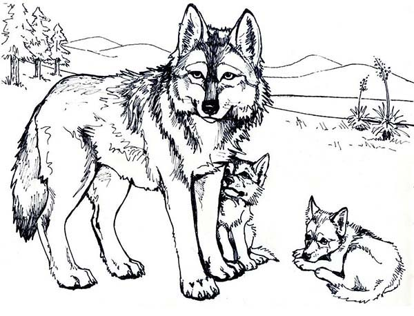 Wolf Mother and Her Cubs Coloring Page: Wolf Mother and