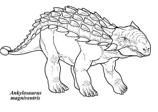 Ankylosaurus Magniventris Coloring Page: Ankylosaurus