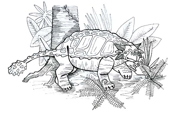 Ankylosaurus Under The Tree Coloring Page Download