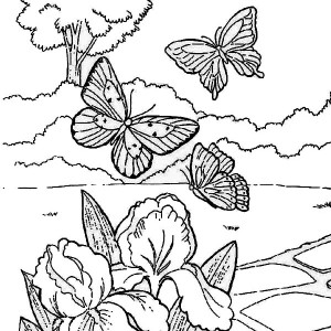 Elsa the Snow Queen Making Snowflakes Coloring Page