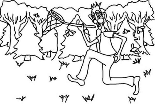 Catch Insect on Night Summertime Coloring Page: Catch