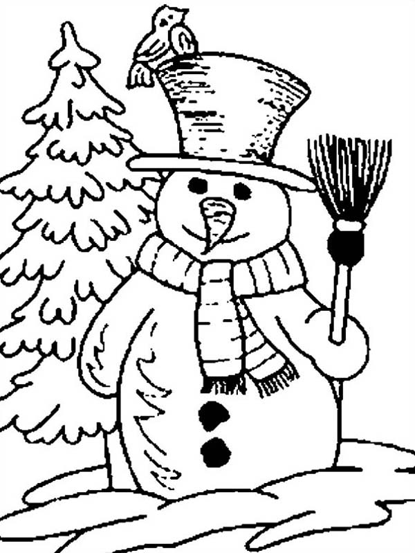 Mr Snowman on Christmas Holding Broomstick with Bird