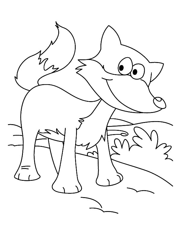fox kit Colouring Pages